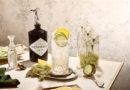 Gin Sommer-Drink: Die Cucumber Lemonade